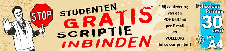 gratis_inbinden_wpsite1